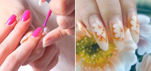 美甲花型画法步骤